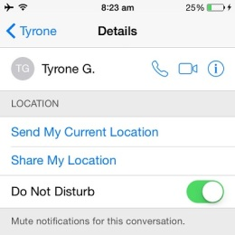 ios mute notifications for a conversation