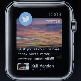 twitter on apple watch