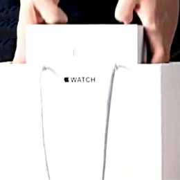 apple watch delivery bag and box