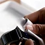 apple watch leather wiper