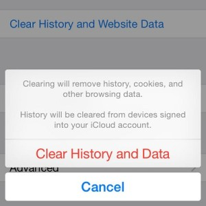 clear safari history and website data