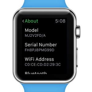 apple watch 12-digit serial number