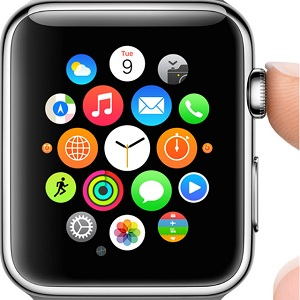 apple watch accessibility shortcut