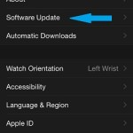 apple watch app general settings