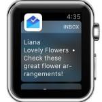 apple watch new mail notification via inbox