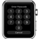 locked apple watch prompting for password