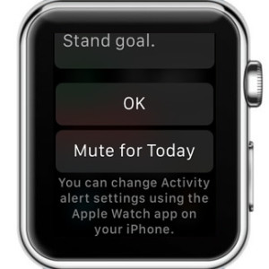 apple watch mute for today feature