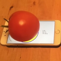 weighing tomato on iphone 6s