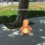 catching chamander pokemon go