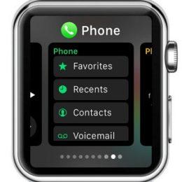 apple watch dock feature