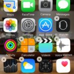 native ios apps that are removable