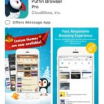 puffin browser pro app store download