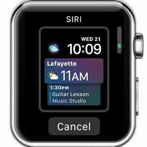 apple watch siri watch face