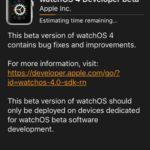 downloading watchos 4 developer beta to apple watch