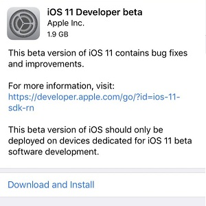 iOS 11 Developer Beta Download and Install screen.