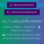 third party iOS 11 Beta Profile download