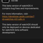 watchos 4 developer beta software update screen