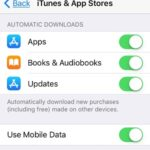 app store automatic downloads settings