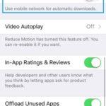 app store use mobile data setting