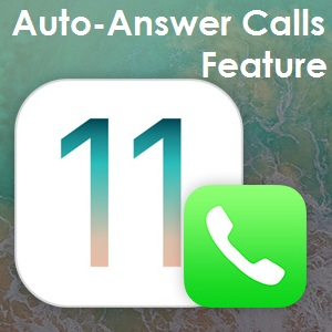 ios 11 auto-answer calls option for iphone