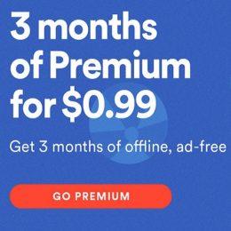 spotify winter holidaysSpotify winter holidays 3-month subscription deal.
