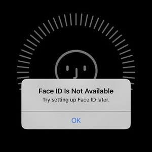 'Face ID Is Not Available' error prompt.