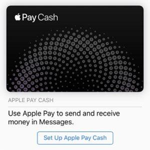 iOS 11 Apple Pay Cash set up screen.
