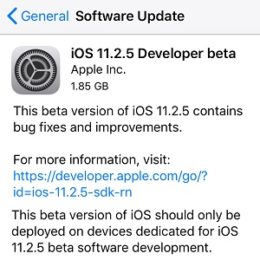 iOS 11.2.5 Developer beta.