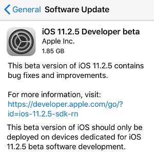 iOS 11.2.5 Developer beta.