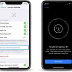 setting up an alternate appearance in iOS 12 face id settings