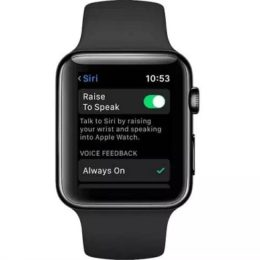 watchOS 5 Raise to Speak Siri feature.
