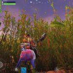 fortnite 6 surprising cornfields