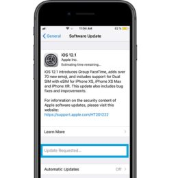 iOS 12.1 Update Requested bug