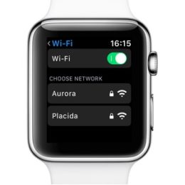connecting to wi-fi network from apple watch