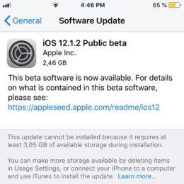 iOS 12.1.2 Public Beta Software Update