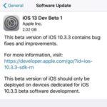 ios 13 developer beta release