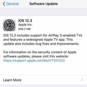 iOS 12.3 software update screen.
