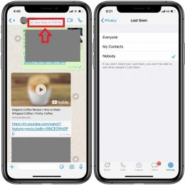 How to disable the Last Seen WhatsApp feature