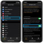 How to enable Apple Watch Fall Detection on iPhone companion app