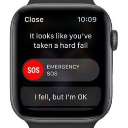 The Apple Watch Fall Detection feature
