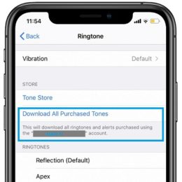 how to download all purchased ringtones from apple