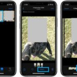 how to edit burst mode photos on iPhone