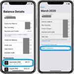 how to export Apple Card monthly transactions from iPhone