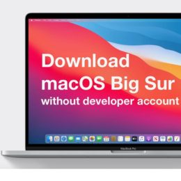 download macOS Big Sur beta without developer account
