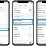 how the enable the iOS Change with Buttons setting