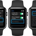 how to delete Siri history on Apple Watch