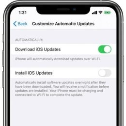 iOS 13.6 Customize Automatic Updates feature