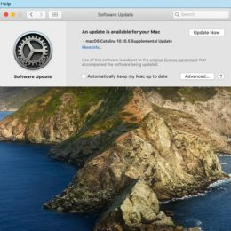 macOS Catalina 10.15.5 Supplemental Update screen