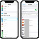 how to find compromised Keychain passwords on iPhone