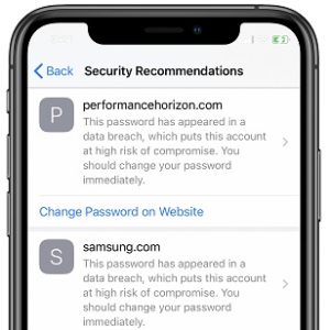 iCloud Keychain Security Recommendations for Passwords in iOS 14